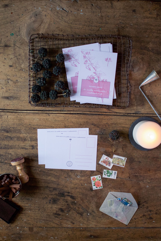 Inverno - Cartoline botaniche - Lily&Sage Design