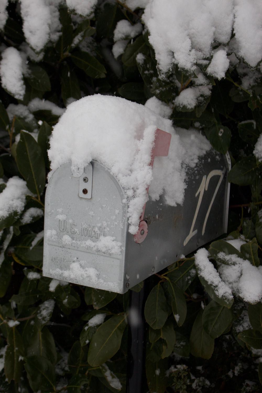 Inverno - La mia cassetta della posta - Lily&Sage Design