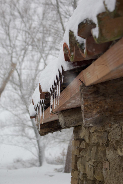Inverno - Neve e ghiaccioli sul tetto della legnaia - Lily&Sage Design