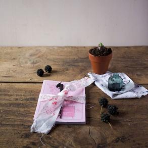 Cartoleria di Lily&Sage Design - Instagram