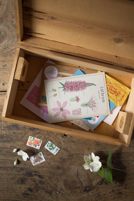 Scrivere cartoline - Snail mail e Postcrossing - Lily&Sage Design