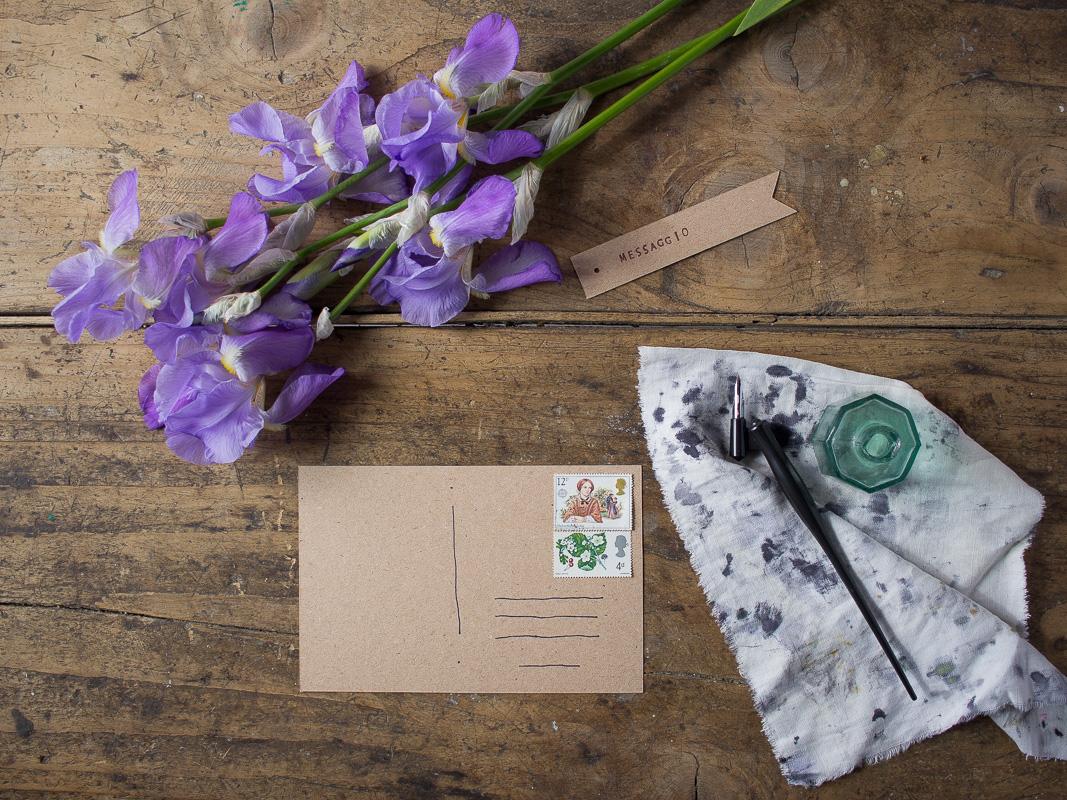 Linguaggio dei Fiori: Iris, Messaggio - Lily&Sage Design