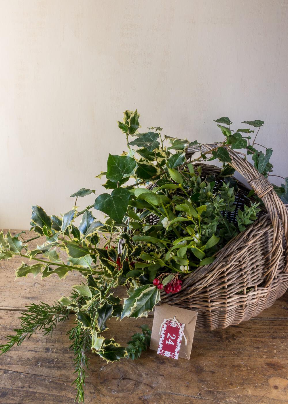 Calendario dell'Avvento - Raccogliere sempreverdi come Jane Austen - Un Natale di tradizioni - Lily&SageDesign