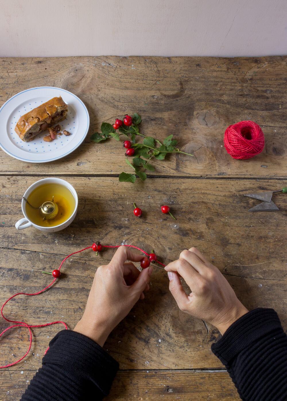 Impacchettare i regali di Natale con il linguaggio dei fiori - Cinorrodi di Rosa Canina - Lily&Sage Design
