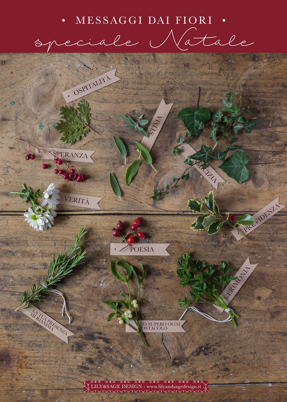 Linguaggio dei fiori - Speciale Natale: Agrifoglio, vischio, edera, rosa canina e molto altro - Lily&Sage Design